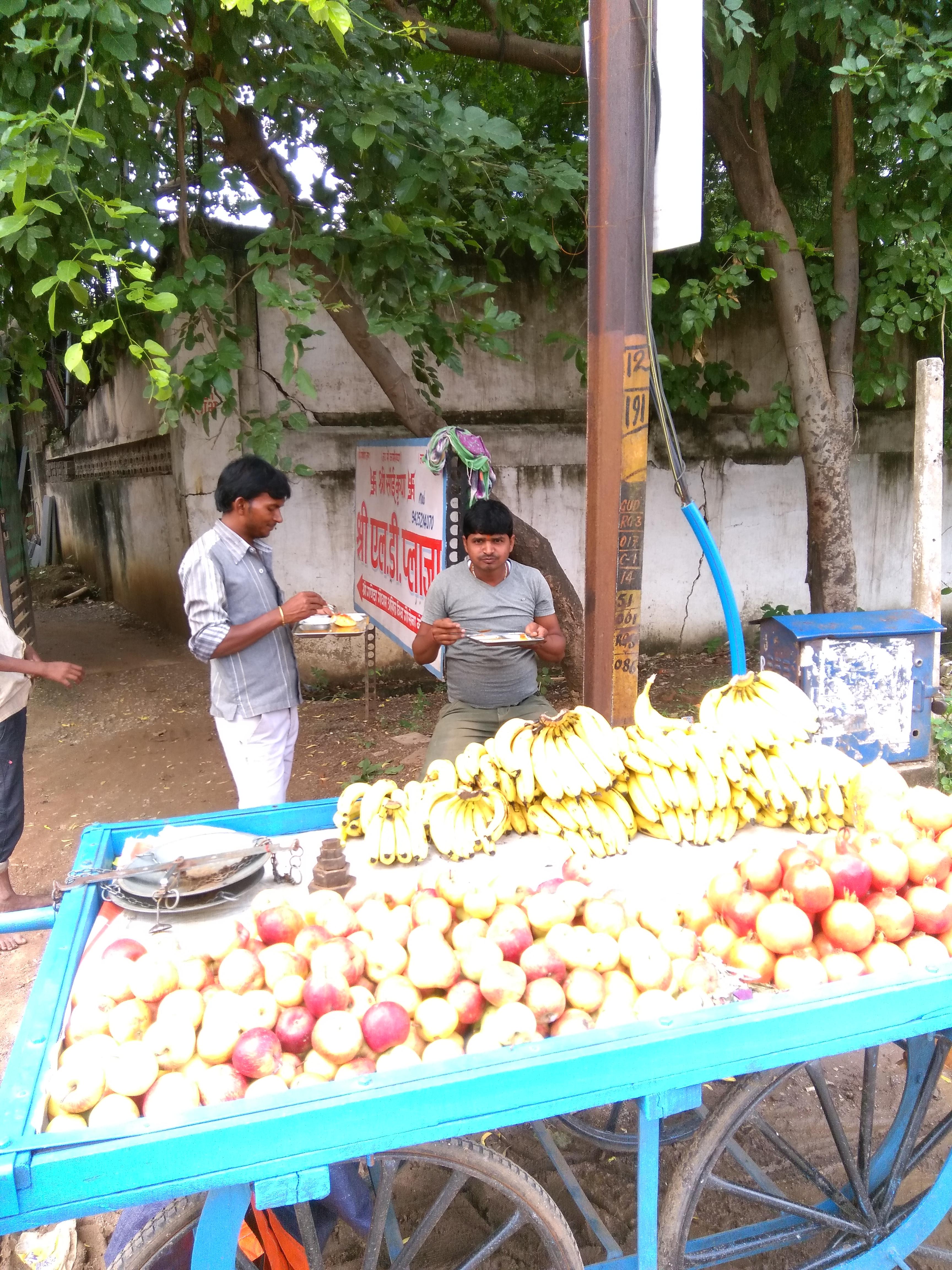Fruits Zone