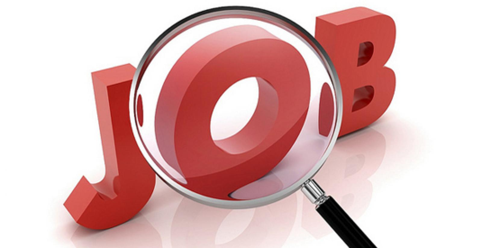Looking For Job In Warehousing In Faridabad
